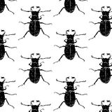 Seamless pattern with beetles Royalty Free Stock Photography