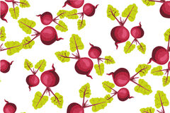 Seamless pattern with beets. Pattern under the mask vector Royalty Free Stock Images