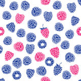 Seamless pattern of berries Stock Image