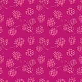 Seamless pattern of berries Stock Images