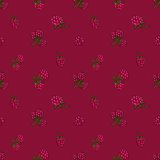 Seamless pattern  of berries Stock Photo