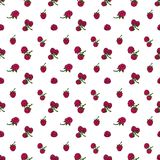 Seamless pattern  of berries. Seamless pattern  of delicious ripe berries, vector background Stock Photography