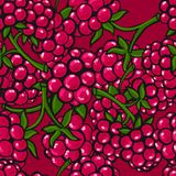 Seamless pattern  of berries Stock Photography