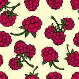 Seamless pattern  of berries Royalty Free Stock Images