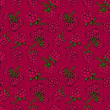 Seamless pattern  of berries Royalty Free Stock Photos