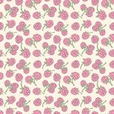 Seamless pattern  of berries Royalty Free Stock Photography