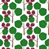 Seamless pattern with berries Royalty Free Stock Photo