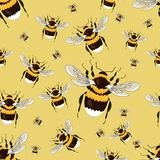 Seamless pattern with big bright bumblebees. Realistic insects. vector illustration