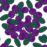 Seamless pattern of bilberries or blueberries. Stock Photography