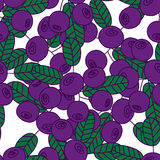 Seamless pattern of bilberries or blueberries. Royalty Free Stock Images