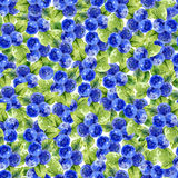 Seamless pattern with bilberry Royalty Free Stock Images