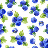 Seamless pattern with bilberry Royalty Free Stock Image