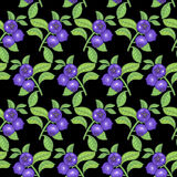 Seamless pattern with bilberry berries Stock Photography