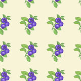 Seamless pattern with bilberry berries Stock Photo