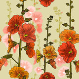 Seamless pattern with bindweed flowers Royalty Free Stock Image