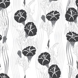 Seamless pattern with  bindweed. Monochrome  background. Stock Photo