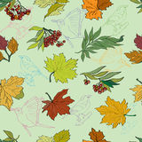 Seamless pattern with bird background. Background with decorative birds and colorful leaves vector illustration