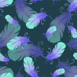 Seamless pattern with bird feathers Stock Images