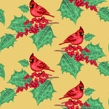 Seamless pattern. Seamless pattern with�a bird Red Cardinal on a branch of holly on a gold background. Vector. Xmas design Royalty Free Stock Image