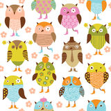Seamless pattern with birds. Funny owls Royalty Free Stock Images
