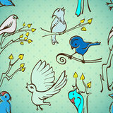 Seamless pattern birds. On a blue background Stock Photos