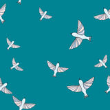 Seamless pattern with birds on blue background Stock Image
