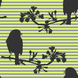 Seamless pattern with birds on the branch of cherry. Vector illustration. Vector illustration of birds that sits on a branch Stock Image