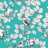 Seamless pattern with birds on branches Royalty Free Stock Images
