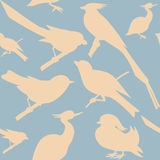 Seamless pattern with birds. Can be used as wedding background, fabric print, wrapping paper, web page backdrop, wallpaper. Vector illustration Royalty Free Stock Photo