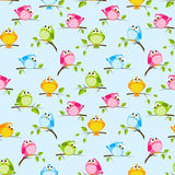 Seamless pattern with  birds Stock Photography