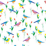 Seamless pattern with birds and flowers. Royalty Free Stock Photography