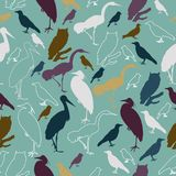 Seamless pattern with birds for printing on paper or fabric. Vector Stock Photos