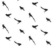 Seamless pattern with birds silhouettes. Seamless pattern with birds can be used as background, fabric print, texture, wrapping paper, web page backdrop Royalty Free Stock Photo