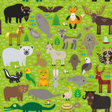 Seamless pattern bison bat fox wolf elk horse cock camel partridge seal Walrus goats Polar bear Eagle bull raccoon snake sheep pan Stock Image