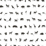 Seamless pattern with Black Animals and Birds Silhouettes vector illustration