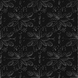 Seamless pattern on a black background. Luxury ornamental  Royalty Free Stock Photo