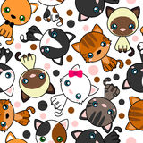 Seamless pattern with  black cat, white cat, grey cat, grey and white cat, brown and black act, brown cat Royalty Free Stock Image