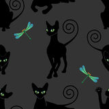 Seamless pattern with black cats. And  dragonflies Royalty Free Stock Photo