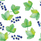 Seamless pattern of black currant Royalty Free Stock Image