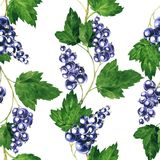 Seamless pattern with black currants Royalty Free Stock Photo
