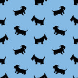 Seamless pattern with black dogs silhouettes, scotchterrier on b Royalty Free Stock Photos