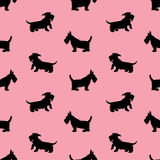 Seamless pattern with black dogs silhouettes, scotchterrier on p Royalty Free Stock Photography