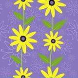 Seamless Pattern. Black eyed susan flower seamless Pattern - vector Stock Images