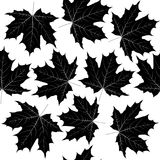 Seamless pattern with black leaves. On white background Royalty Free Stock Image