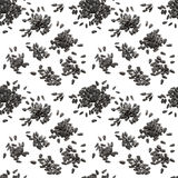 Seamless pattern of black sunflower seeds Royalty Free Stock Photography