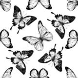 Seamless pattern with black and white blue emperor, menelaus blue morpho, blue morpho