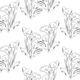 Seamless pattern black and white callas flowers Royalty Free Stock Image