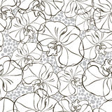 Seamless pattern with black and white orchids . Royalty Free Stock Image