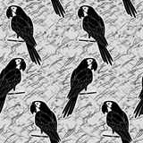 Seamless pattern, black and white parrots Royalty Free Stock Image