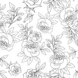 Seamless pattern black and white rose, vintage flower vector Royalty Free Stock Photo
